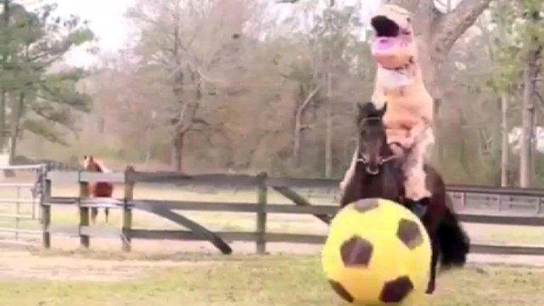 Faustino Tino Asprilla se divierte en las redes sociales como antes en un campo de juego. Publicó en Twitter que enseñaba a jugar al fútbol a su caballo vestido de dinosaurio y muchos medios cayeron en la trampa.