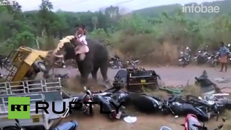El ataque de furia del elefante en India